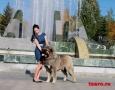 Александр Македонский_4914