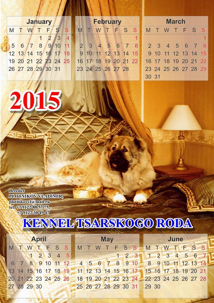 kalendar8