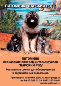 tsarskiy-rod